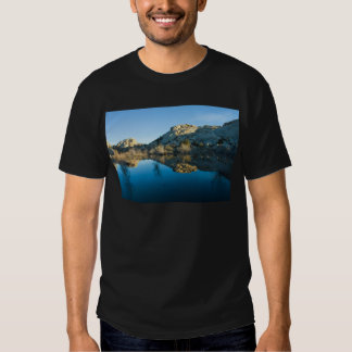 Desert Reflections Tee Shirts