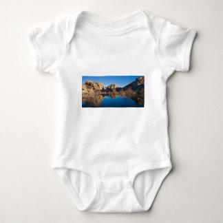 Desert Reflections Tshirts