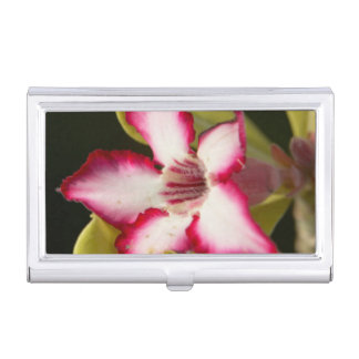Desert-Rose (Adenium Obesum), South Africa Business Card Holder