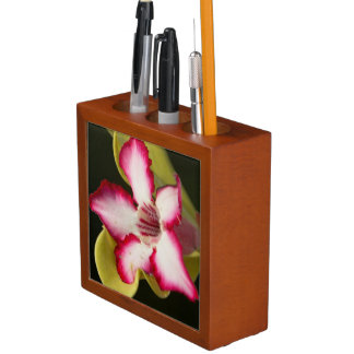 Desert-Rose (Adenium Obesum), South Africa Desk Organiser