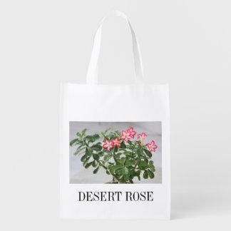 Desert Rose Flowers Plant