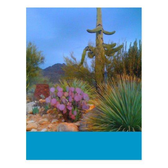 Desert Scene Postcard