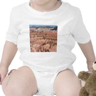 Desert Spikes Scene T Shirts