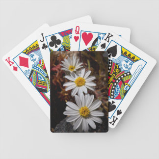 Desert Star Wildflowers Bicycle Playing Cards