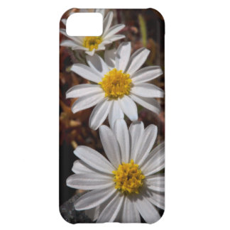 Desert Star Wildflowers iPhone 5C Case