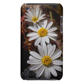 Desert Star Wildflowers iPod Touch Cover