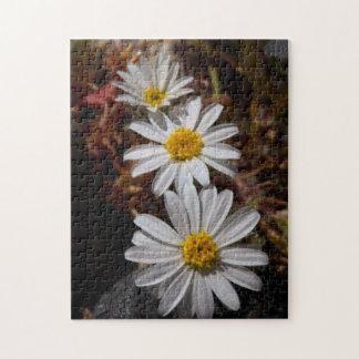 Desert Star Wildflowers Jigsaw Puzzle