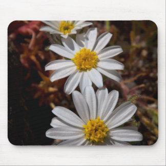 Desert Star Wildflowers Mouse Mat