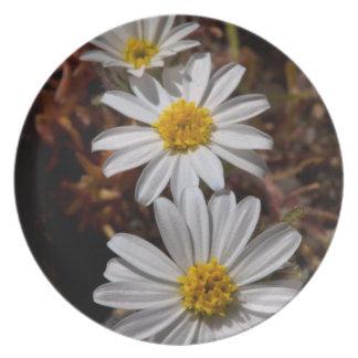 Desert Star Wildflowers Plate
