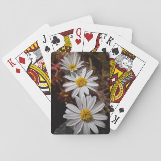 Desert Star Wildflowers Playing Cards