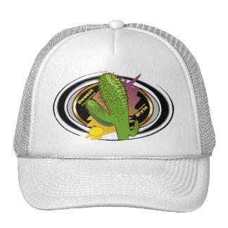 Desert Style Trucker Hat! Cap
