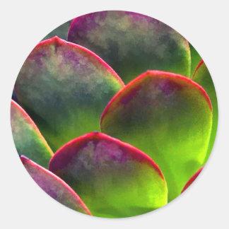 Desert Succulent in Bright Sun and Shade Classic Round Sticker