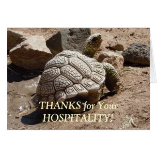 Desert Tortoise - Hospitality Thank You Card