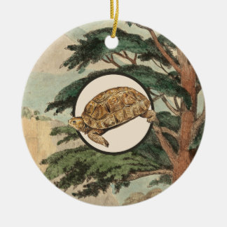 Desert Tortoise In Natural Habitat Illustration Christmas Ornament