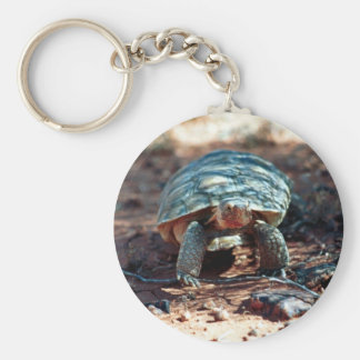 Desert Tortoise Key Ring