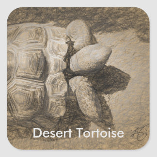 Desert Tortoise Stickers