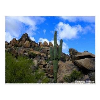Desert Treasures Postcard