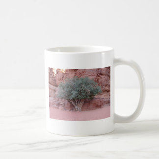 Desert Trees Coffee Mugs