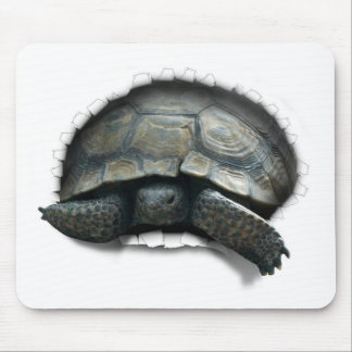 DESERT TURTLE,  COMING AT YA MOUSE PAD