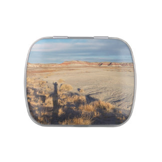 Desert Wave: Petrified Forest National Park Jelly Belly Tins