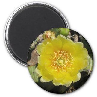 desertflower 6 cm round magnet