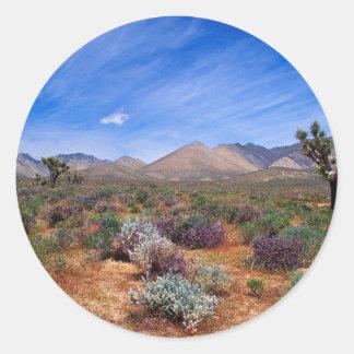 Deserts Bloom Conservation Area Classic Round Sticker
