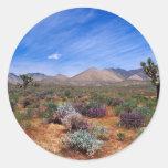 Deserts Bloom Conservation Area Round Sticker