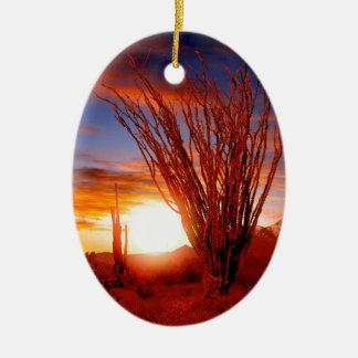 Deserts Ocotillo Sonora Arizona Christmas Ornament