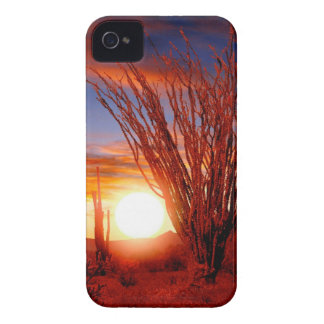 Deserts Ocotillo Sonora Arizona iPhone 4 Cover