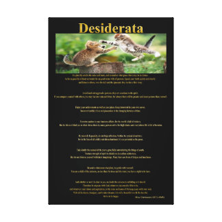 Desiderata Cat Fight Gallery Wrapped Canvas