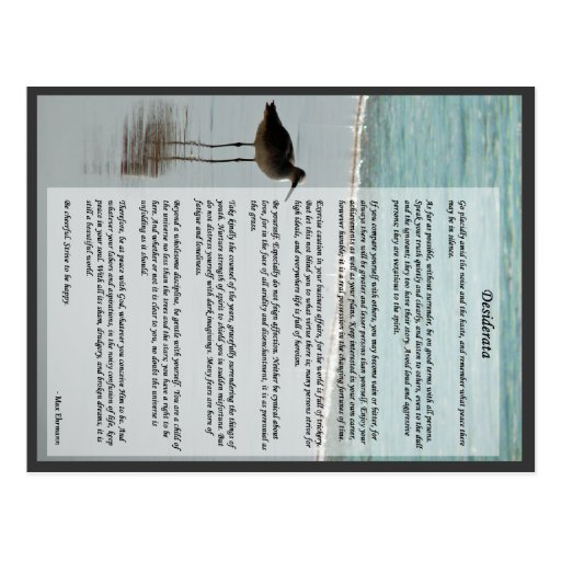 Desiderata Poem - Seagull on the Beach Scene Post Cards