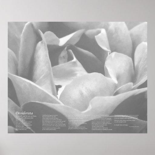 Desiderata - Satin Texture Rose in Black and White Print