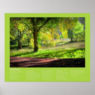 Desiderata - Start of a Cornish Autumn Print