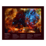 Desiderata - Stellar Nursery in Tarantula Nebula