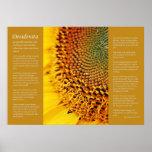 Desiderata - Sunflower Seeds Posters