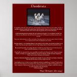 Desiderata white arabian horse Posters
