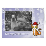 Design Your Own Cartoon Cat (Christmas) Greeting Card
