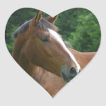Design your own Custom Photo Stickers Heart Shape