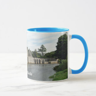 Desmond Castle Mug