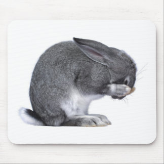 Despairing Rabbit Mouse Mat