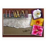 Destination wedding - Hawaii Post Card