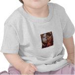 Destiny by JW Waterhouse, Vintage Victorian T-shirt