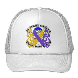 Destroy Bladder Cancer Trucker Hats