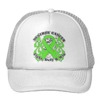 Destroy Lymphoma Cancer Hat