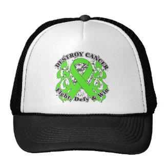 Destroy Non-Hodgkins Lymphoma Hat