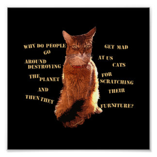 Destroy! Somali Cat Poster