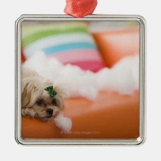 Destructive dog christmas ornament