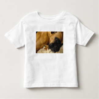 Detail of a Boxer Toddler T-Shirt