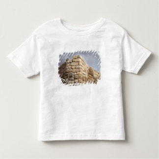 Detail of a stone wall toddler T-Shirt