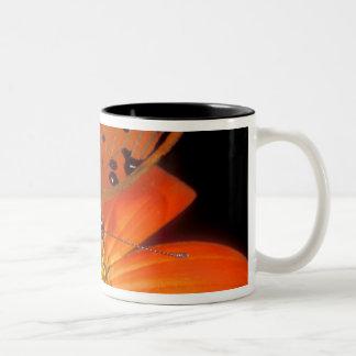 Detail of captive gulf fritillary butterfly on coffee mug